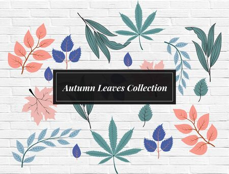The beautiful leaf background where it acts as a great gesture for linking your beautiful ideas