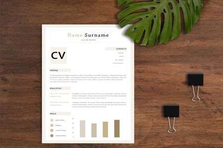 The best and exact resume for a candidate to attract the interviewer the most Reklamní fotografie - 128950253