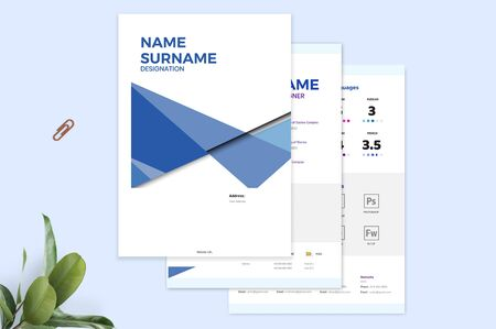 The perfect and exact template for resume