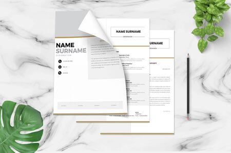 the perfect and exact template for the resume to attract the interviewer the most