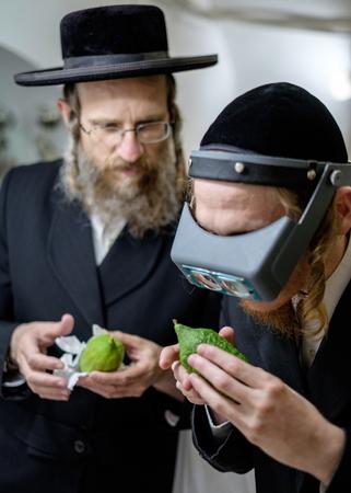 shearim: Jewish Holidays