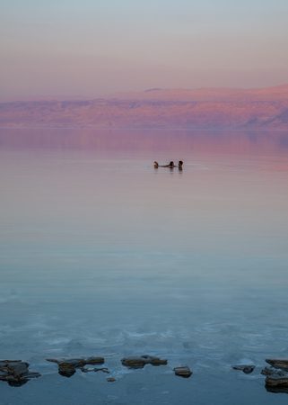 Lovers floating on the Dead Sea by sunset time. On the background, the Jordan mountains turn red by this time of the day.