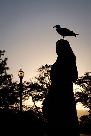 A seagull stands on the head of a woman sculpture in Montjuic, Barcelona