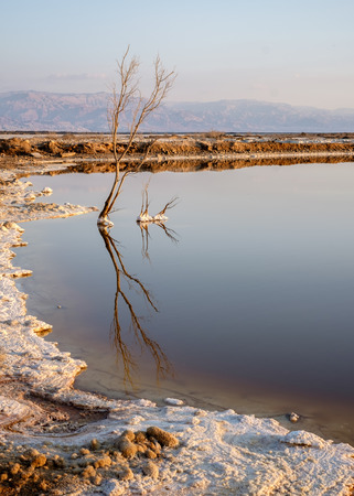 Landschap van de Dode Zee in Israël. Tegen zonsondergang worden de Jordaanse bergen aan de andere kant paarsrood