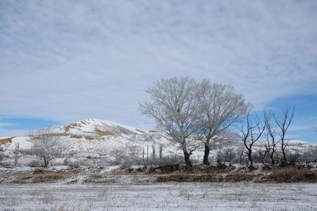 겨울에 Sarykum barchan입니다. 러시아 다게 스탄