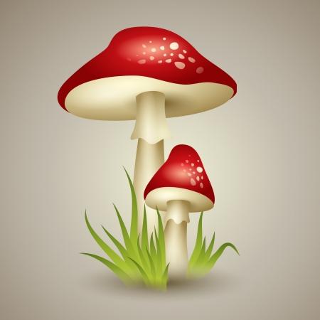 Illustration of Mushroom Stock Vector - 21728686