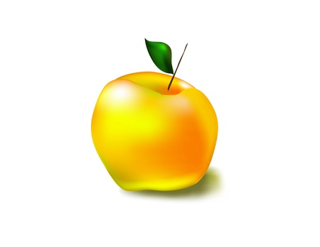 yellow apple: beautiful yellow apple with a shadow on a white background Illustration