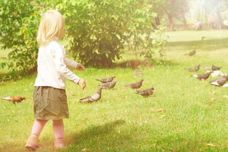 The little girl in a park feeding pigeons photographing outdoors in summer Stock Photo - 10256843