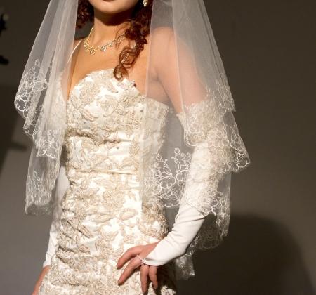 bride in wedding dress Stock Photo - 14836834