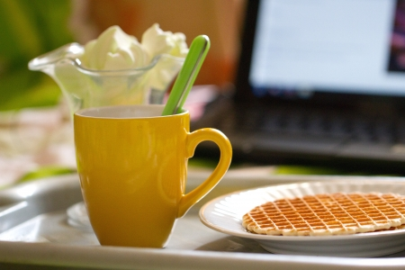 freelancing: Round wafers and tea, breakfast on the background of laptop