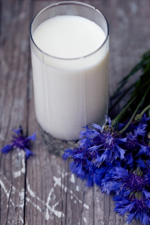 glass of milk and a bouquet of cornflowers on a purple table