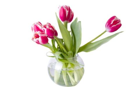 arreglo floral: Ramo de tulipanes rojos. aislado sobre fondo blanco Foto de archivo