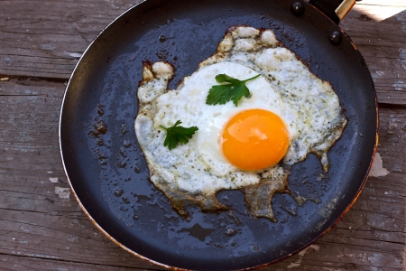Scrambled eggs from a hens egg in a frying pan photo
