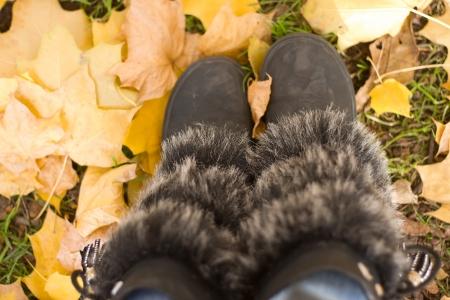Walking through the autumn leaves, closeup Stock Photo