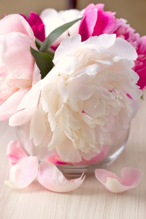 Peony flower in a vase photo