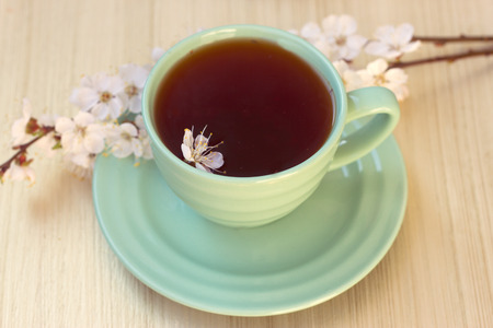 Cup of tea with blooming cherry twig. toning photo