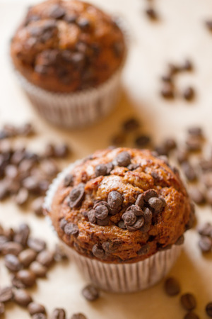 two chocolate muffins with a coffee beans photo