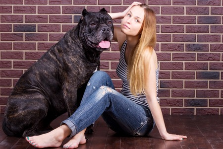 cane corso: Girl in jeans and t-shirt sitting near the wall and hugging a big dog Cane Corso Stock Photo