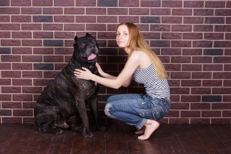 cane corso: The girl in jeans and a t-shirt and sat down near the wall hugging a big dog Cane Corso