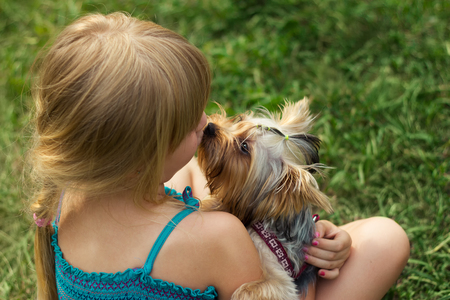 6 years: Girl 6 years old on the grass playing with a Yorkshire Terrier