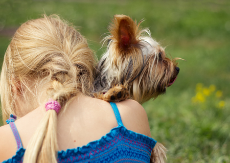 6 year old: Yorkshire terrier on the shoulder of 6 year old girl. looking to the right