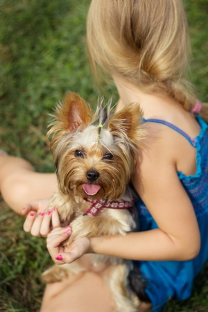 6 years: Girl 6 years old, and Yorkshire terrier on glade