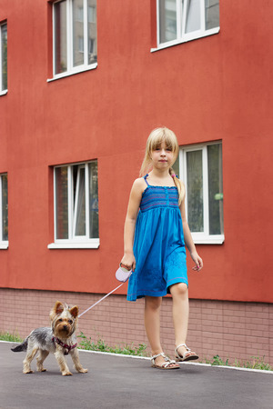 6 years girl: Girl 6 years old walking with a Yorkshire terrier near a high-rise building