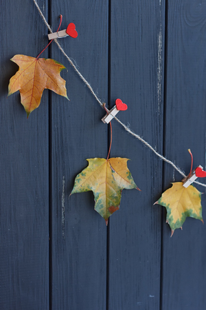 vestidos antiguos: autumn maple leaves on a clothes line. black fence Foto de archivo