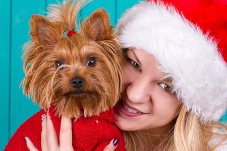yule: Beautiful girl in santa cap with yorkie dog in red sweater