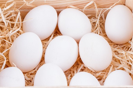 A lot of white chicken eggs in a bunch Stock Photo