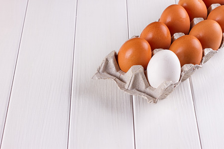 eggtray: Container of ten eggs. Nine eggs brown one egg white. on white background.