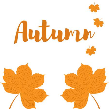 Autumn yellow Leaves of chestnut Illustration