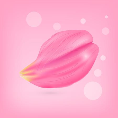 Vector illustration. Set of pink rose petals on a pink background