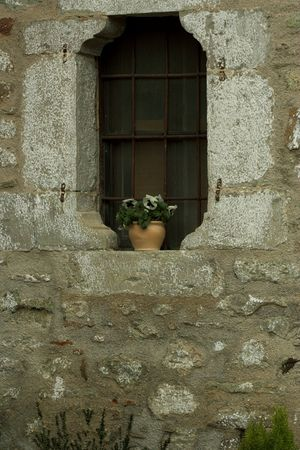 iron barred: flower pot on the window Stock Photo