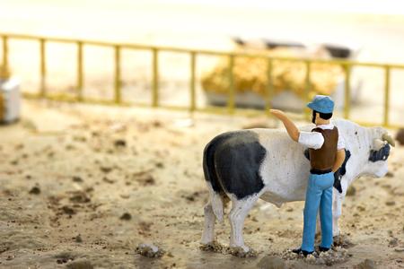 mini farm: Miniature Farm Animals