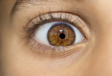 insightful: insightful look brown eyes Stock Photo