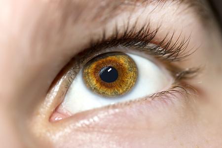 eyes close up: Image of mans brown eye close up. Stock Photo