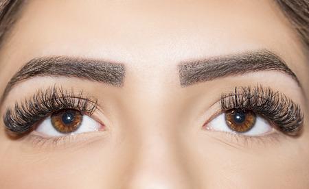 Brown Eye Makeup. Beautiful Eyes Make up detail, eyelash extension