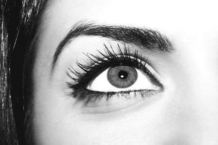 extremely: Woman eye with extremely long eyelashes Stock Photo