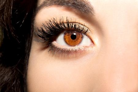 Mooie inzichtelijke blik ziet de ogen van de bruine vrouw Stockfoto