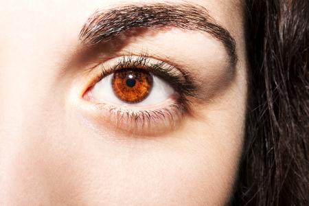 Beautiful insightful look brown womans eyes
