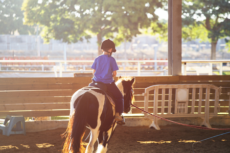 Portrait of little boy riding a horse. First lessons of horseback riding. Sunny day Stock Photo - 93210068