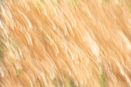 Abstract motion blur effect. Asphalt texture on road.