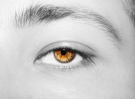A beautiful insightful look mans eye. Close up shot