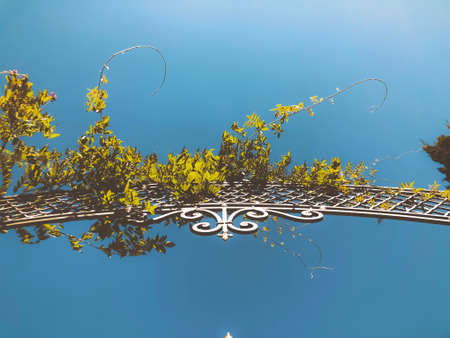Entrance to the botanic garden in Tbilisi. Beautiful iron gate against the blue sky. Summer day in the city. Imagens - 150980569