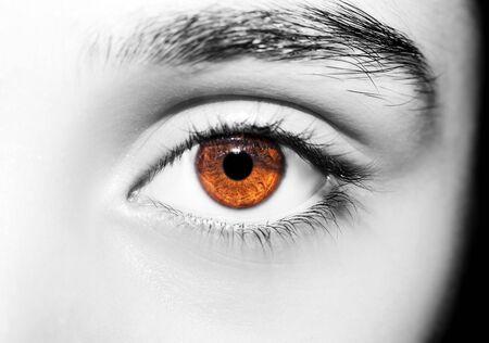 Piękny wnikliwy wygląd kobiecego oka. Strzał z bliska Zdjęcie Seryjne