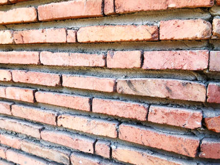 Brick wall  in summer day. Close-up view.
