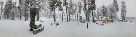 Snowfall. Trees in the snow. Children walk in the snow. Bench in the snow under a tree. Mountain ski resort Bakuriani.