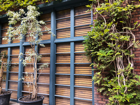 Eco-style in the modern courtyard with beautiful views, deciduous decor on a brick building.