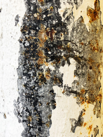 Texture of rusty iron, cracked paint on an old metallic surface, sheet of rusty metal with cracked and flaky paint. Banco de Imagens